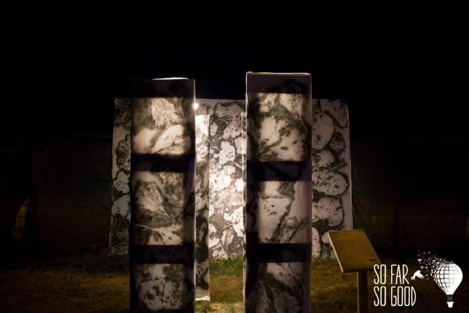 """""""Petasites"""" - Installazione di Federico Seppi e Ismaele Nones a So Far So Good 2015"""