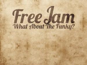 "16/08/2013 Concerto dei ""Free Jam"""
