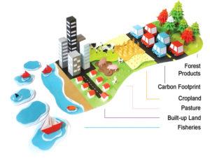 Giornata Mondiale dell'Ambiente: qual è il tuo ruolo nel cambiamento climatico?